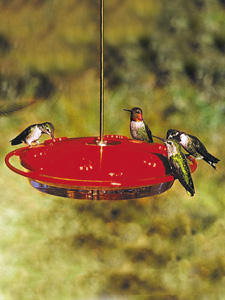 Large hummingbird feeder